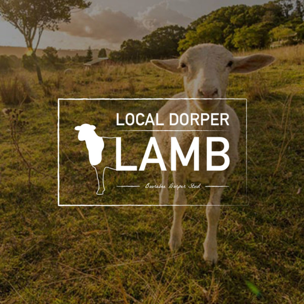 Local Dorper Lamb